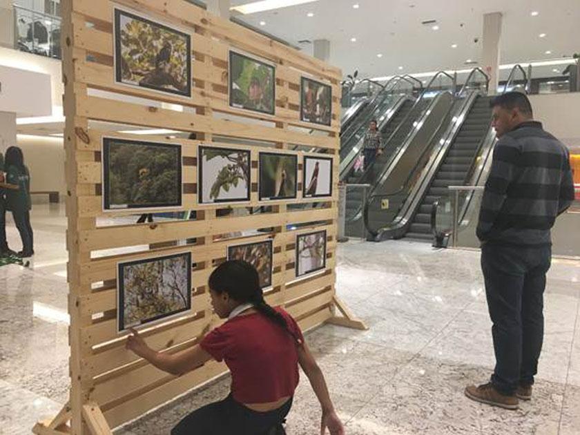 Exposição apresenta resultado das ofinas de fotografia da ONG Onda verde.